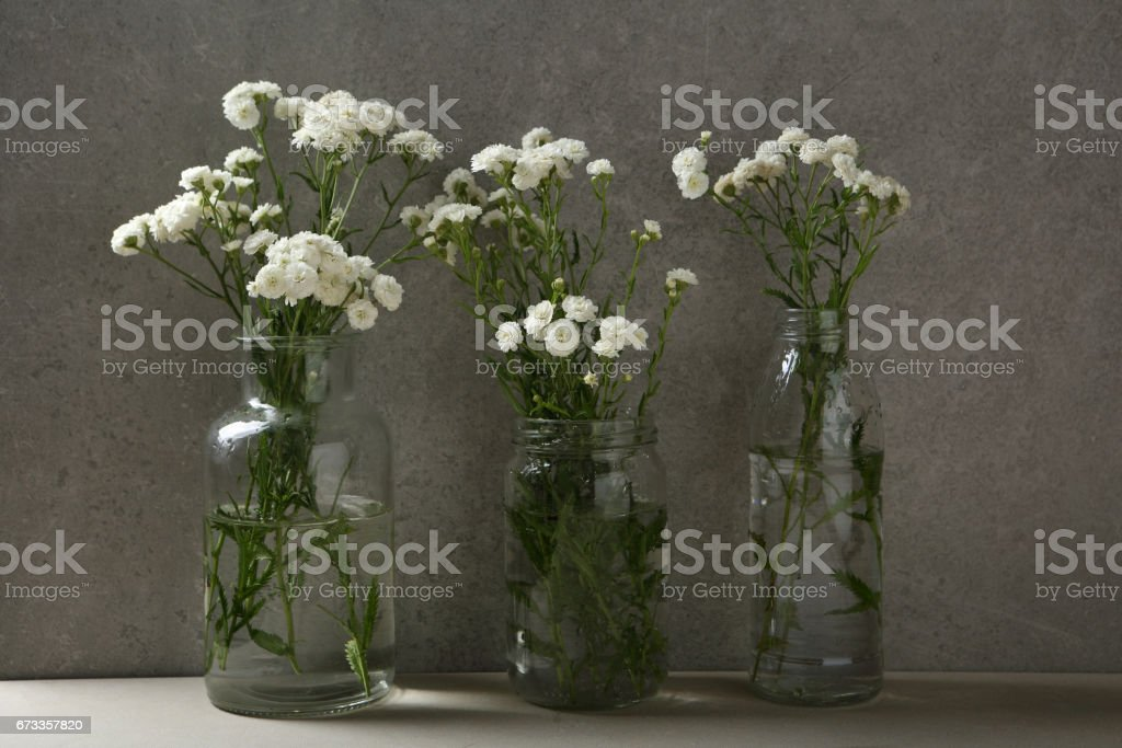 Small White Flowers In Vases Concrete And Glass Stock Photo More