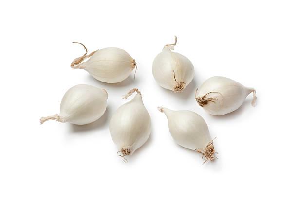 kleine weiße perlzwiebeln - perlzwiebeln stock-fotos und bilder