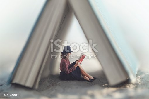 istock small woman reading a book law protected by a house made from a giant book 1071655342