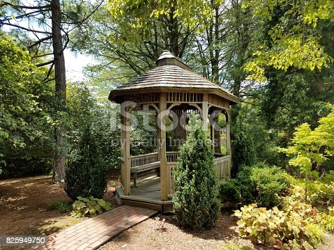 small wood gazebo and several pine and other trees