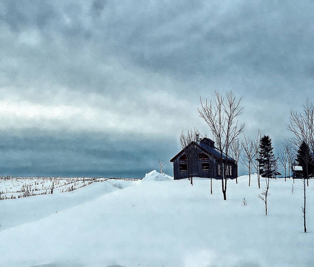 A small wooden barn. stock photo