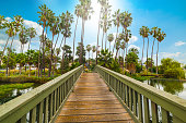 Small wooden bridge in Echo Park lake in Los Angeles. Southern California, USA