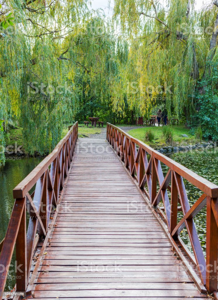 Admirable Small Wooden Bridge Picnic Table And Benches In The Park Bralicious Painted Fabric Chair Ideas Braliciousco