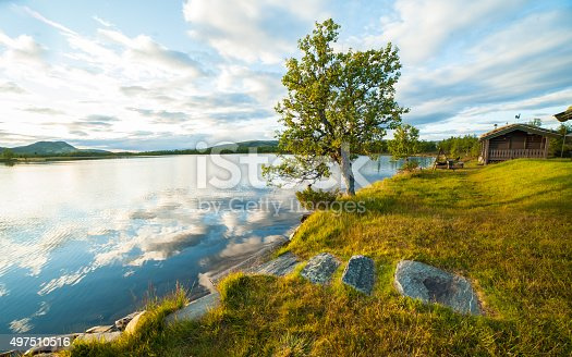 876420064istockphoto Small wooden cabin on the shore of lake with tree 497510516