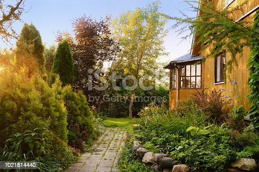 Small wooden country house with sunny backyard. Cozy plants and trees along the stone path