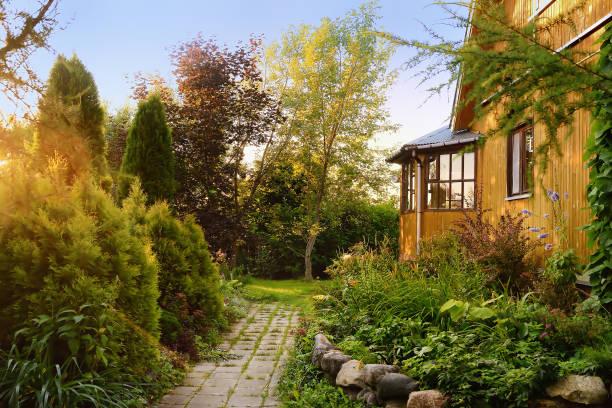 Casa de campo de madera pequeño con patio soleado - foto de stock