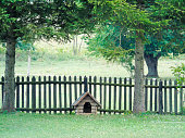 Small wooden dog house in garden.
