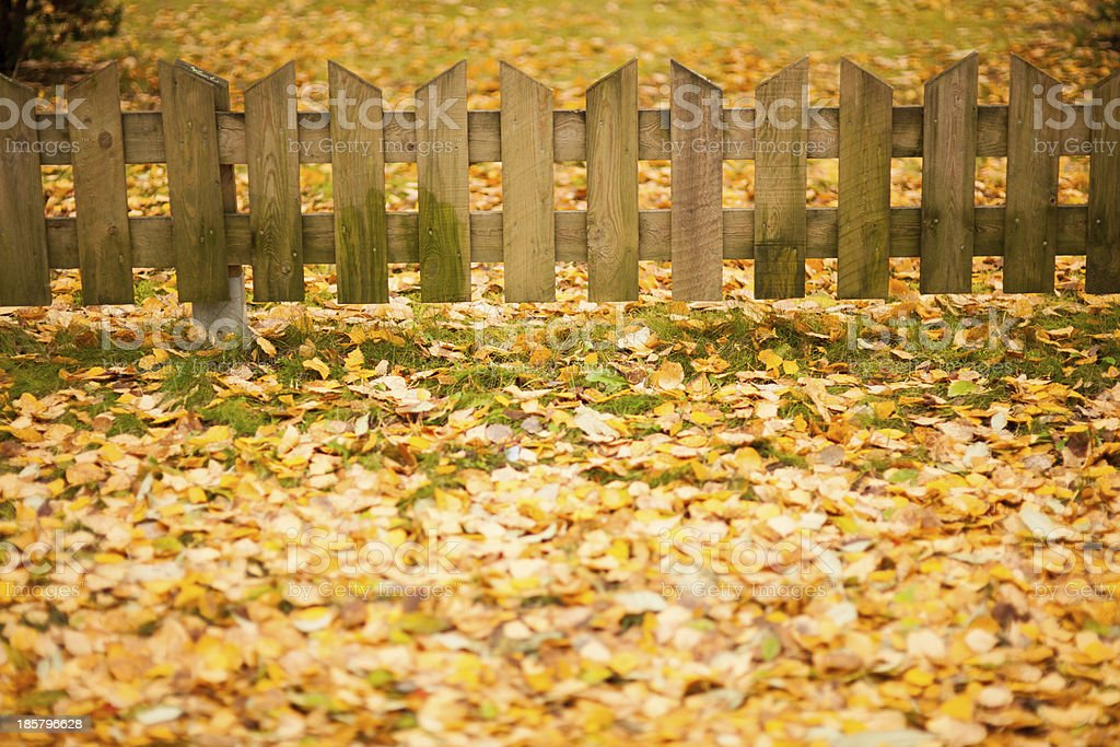 Small wooden fence and yellow leaves of autumn royalty-free stock photo