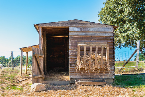 Small Wooden Hut For Animals In A Meadow Stock Photo Download