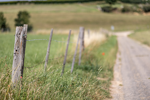 Small wooden pole with barbed wire forming a fence between green grass in agricultural land next to a rural dirt road with a blurred background