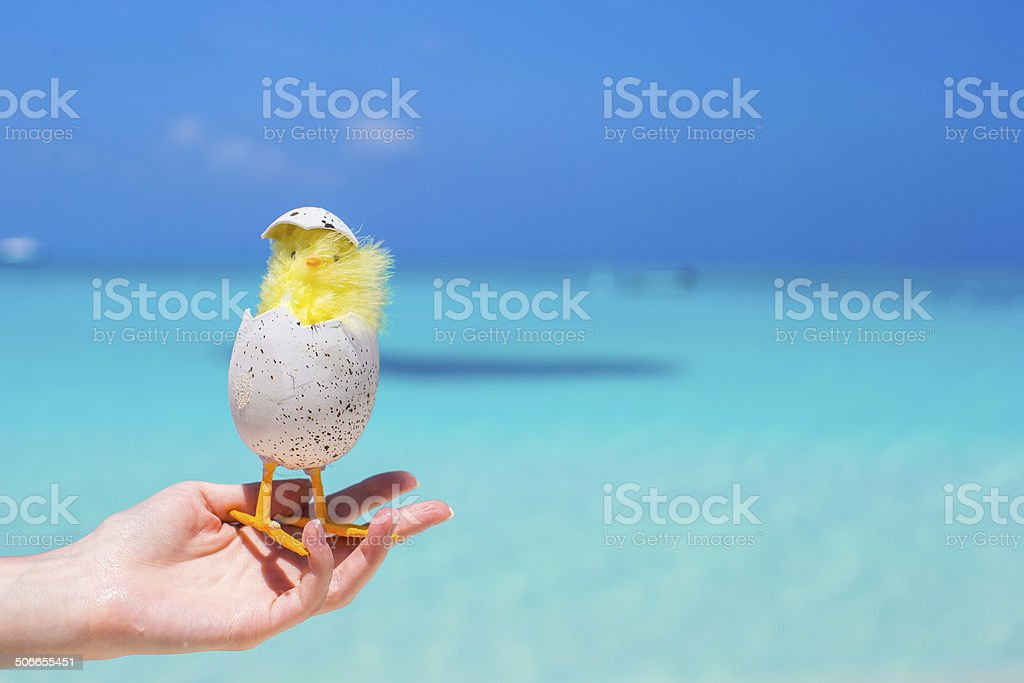 Small yellow easter chicken on the white beach royalty-free stock photo