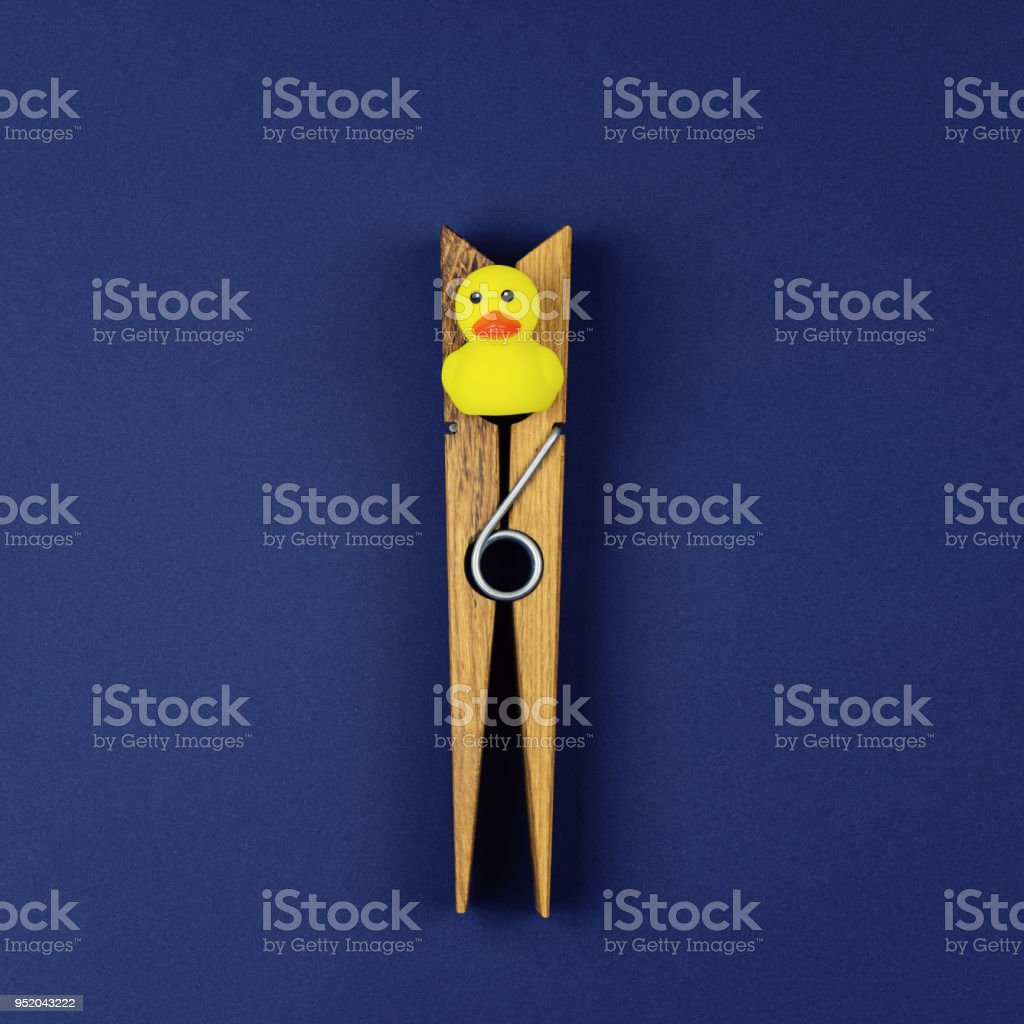 Small yellow rubber duck and a large wooden clothespin stock photo