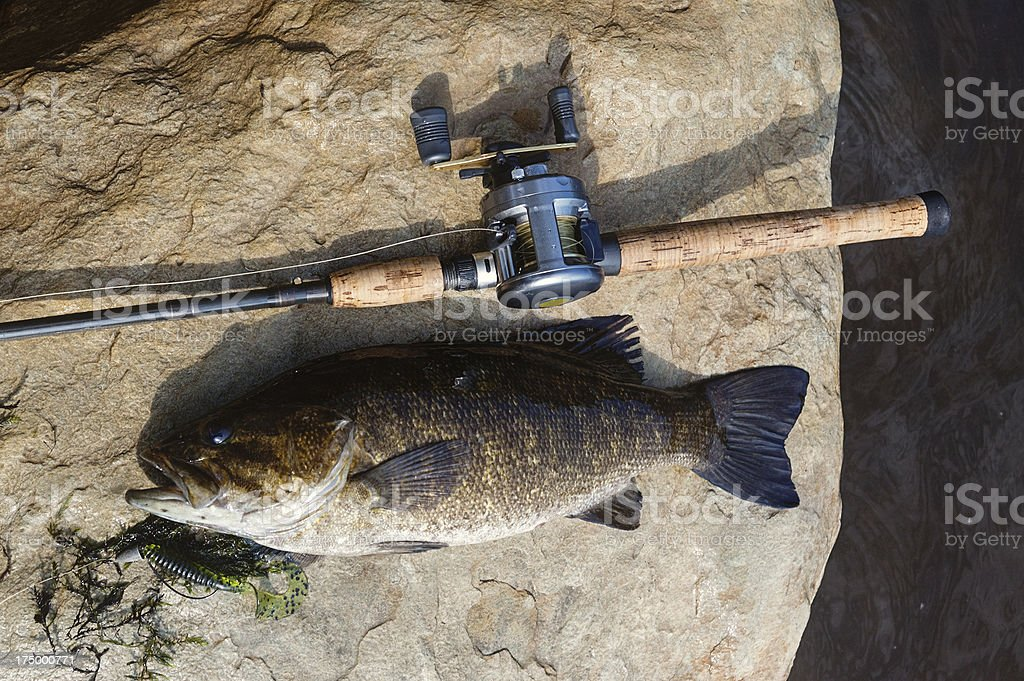 Smallmouth Fishing stock photo