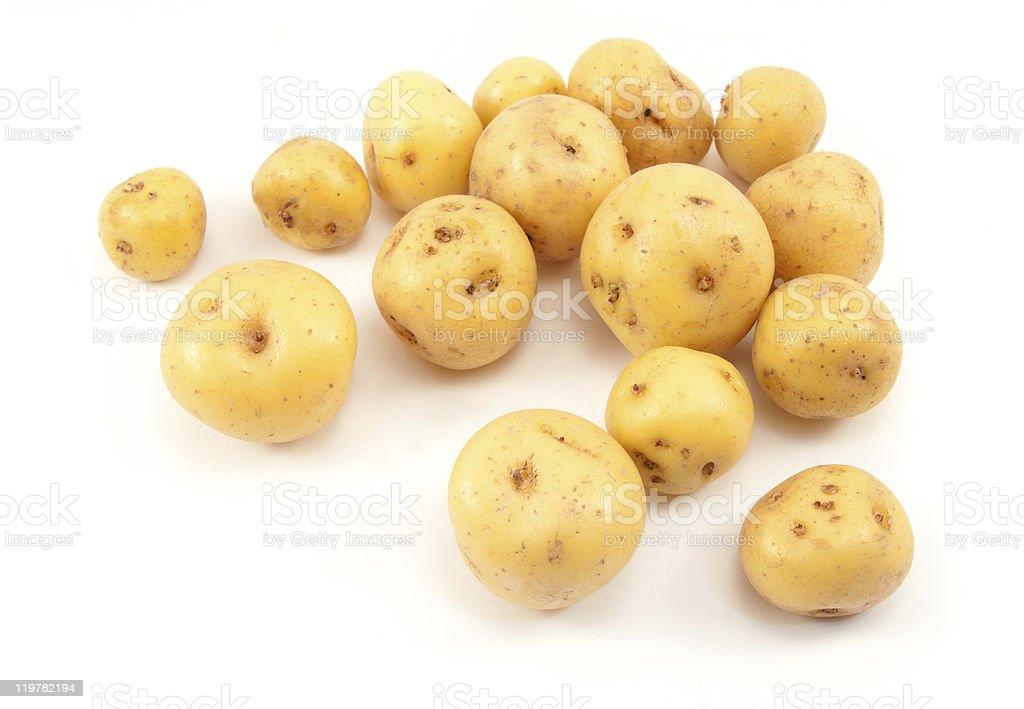 Smalls potatoes stock photo