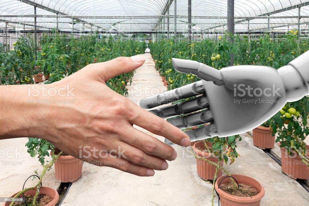 Intelligente Landwirtschaft, künstliche Intelligenz (KI) Berater oder Robo-Berater-Technologie. Händeschütteln Obstgarten Landwirt und Automatisierung Roboter mit Automatisierung Iot Bauernhof smart Gemüse Hintergrund. – Foto