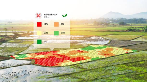 Agricultura inteligente, granja, concepto de agricultura de precisión. NIR las imágenes pantalla de la aplicación usada para crear mapas de salud de campo utilizando el índice porcentual de normalizar diferencia vegetación en arroz de campo. - foto de stock