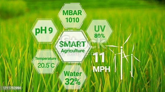 1128982514 istock photo Smart digital agriculture technology by futuristic sensor data collection 1211752994
