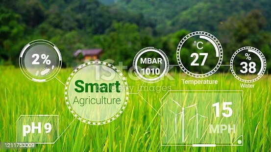 1128982514 istock photo Smart digital agriculture technology by futuristic sensor data collection 1211753009