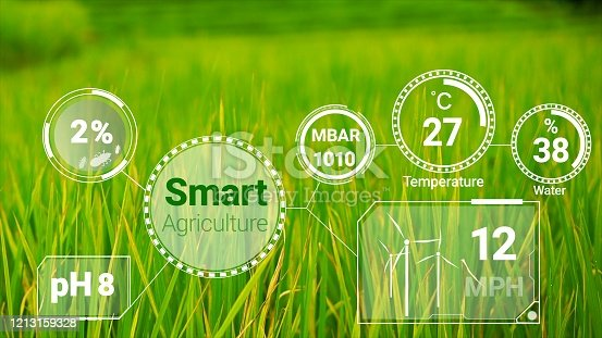 1128982514 istock photo Smart digital agriculture technology by futuristic sensor data collection 1213159328