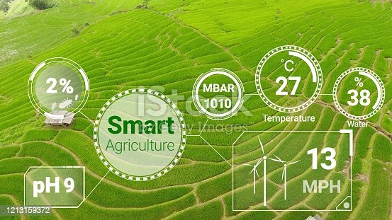 1128982514 istock photo Smart digital agriculture technology by futuristic sensor data collection 1213159372