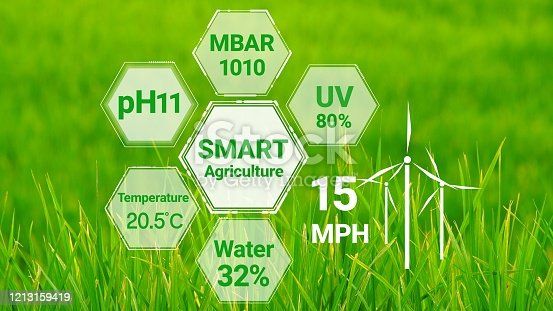 1128982514 istock photo Smart digital agriculture technology by futuristic sensor data collection 1213159419