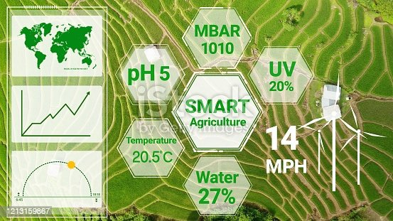 1128982514 istock photo Smart digital agriculture technology by futuristic sensor data collection 1213159867