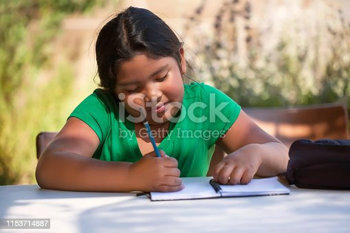 istock Smart elementary student using imagination to sketch ideas on notebook in an outdoor setting while the sun is setting. 1153714887