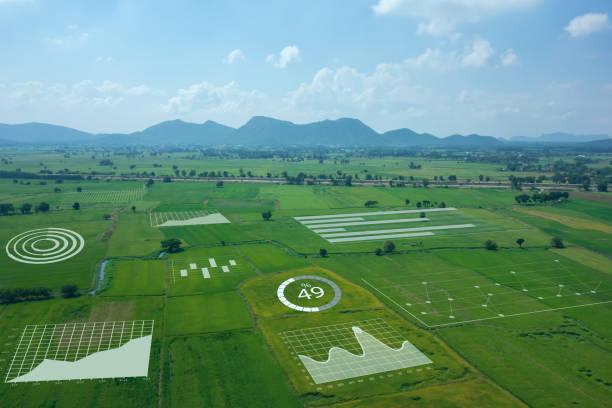 스마트 팜, 농업 개념, 농부 사용 데이터 증강 혼합 가상 현실 통합 인공 지능 통합 깊은, 기계 학습, 디지털 트윈, 5g, 산업 4.0 기술을 개선 - 농업 뉴스 사진 이미지