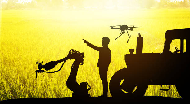 Smart farm agriculture precision technology concept. Silhouette of farmer , automation robot arm machine , uav drone , tractor truck and rice field background. Flare light effect. stock photo
