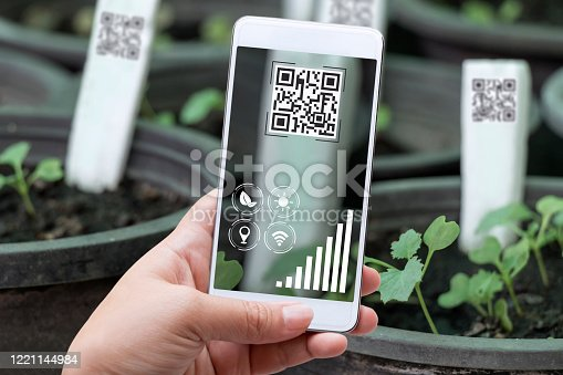 istock Smart farming agribusiness and technology. Farmer hand using smart phone scanning QR Code track application detail of produce agricultural farm for verify quality between producer and consumer. 1221144984