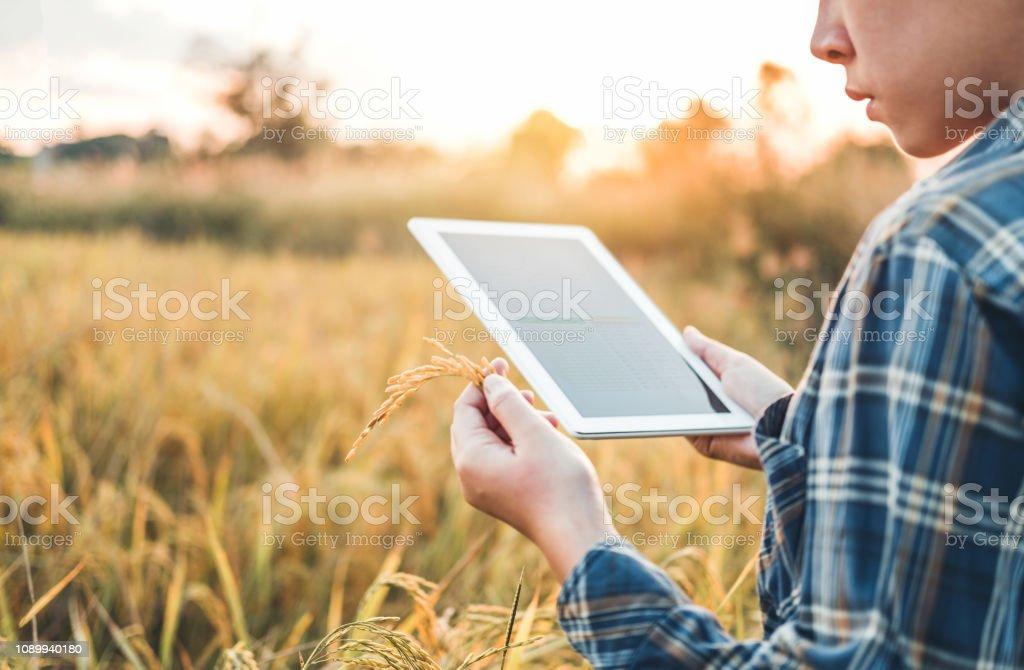 femme agricole recherche