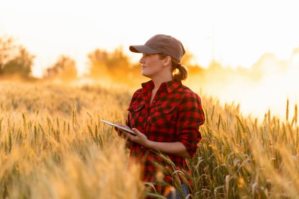 intelligente landwirtschaft und digitale landwirtschaft. - farmer stock-fotos und bilder
