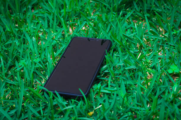 Smart phone with blank screen as copy space lying on grass in background. stock photo