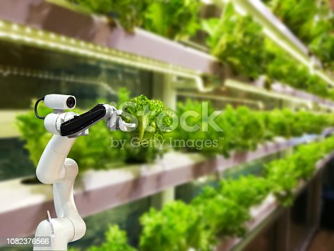 istock Smart robotic farmers in agriculture futuristic robot automation to vegetable farm 1082376566
