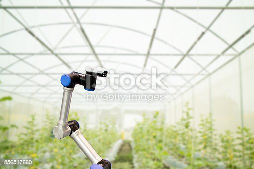 1022530858 istock photo smart robotic in agriculture concept, robot farmers (automation) must be programmed to work in the vertical or indoor farm for increase efficiency, growing a seed, harvesting, monitoring insect or bug 856517660