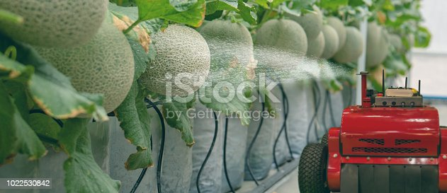 1022530858istockphoto smart robotic in agriculture futuristic concept, robot farmers (automation) must be programmed to work to spray chemical,fertilizer or increase efficiency, growing a seed, harvesting, reduce time 1022530842