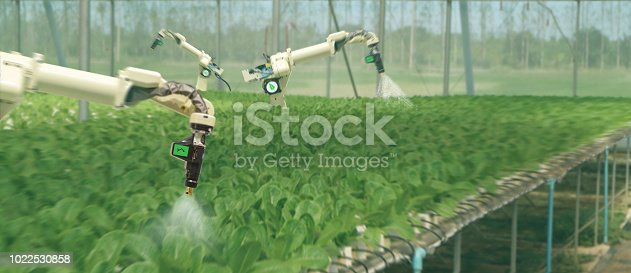 1022530858istockphoto smart robotic in agriculture futuristic concept, robot farmers (automation) must be programmed to work to spray chemical,fertilizer or increase efficiency, growing a seed, harvesting, reduce time 1022530858
