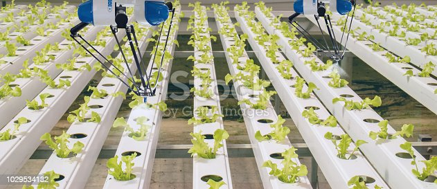1022530858istockphoto smart robotic in agriculture futuristic concept, robot farmers (automation) must be programmed to work to spray chemical,fertilizer or increase efficiency, growing a seed, harvesting, reduce time 1029534132