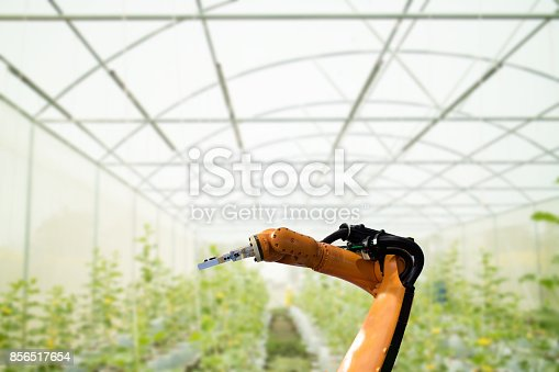 1022530858 istock photo smart robotic in agriculture futuristic concept, robot farmers (automation) must be programmed to work in the vertical or indoor farm for increase efficiency, growing a seed, harvesting, reduce time 856517654