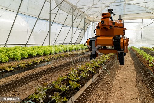 1022530858istockphoto smart robotic in agriculture futuristic concept, robot farmers (automation) must be programmed to work to spray chemical,fertilizer or increase efficiency, growing a seed, harvesting, reduce time 911693346