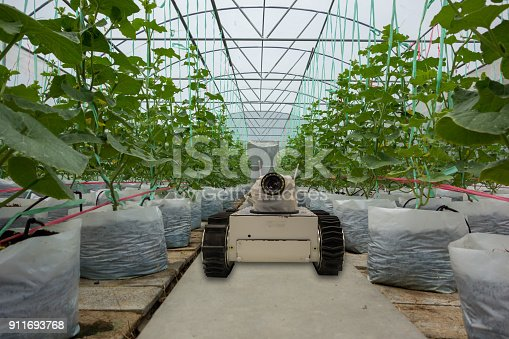 1022530858istockphoto smart robotic in agriculture futuristic concept, robot farmers (automation) must be programmed to work to spray chemical,fertilizer or increase efficiency, growing a seed, harvesting, reduce time 911693768