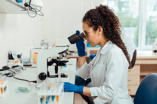 Smart young woman sitting in front of the microscope Modern scientific equipment. Smart young woman sitting in front of the microscope while conducting a special research microbiologist stock pictures, royalty-free photos & images