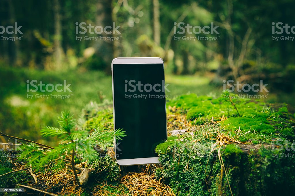 Smartphone in nature. stock photo
