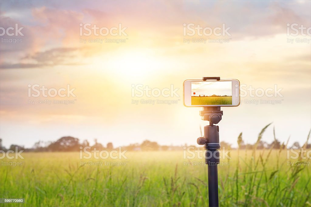 Smartphone on tripod record timelapse in the sunset nature background stock photo