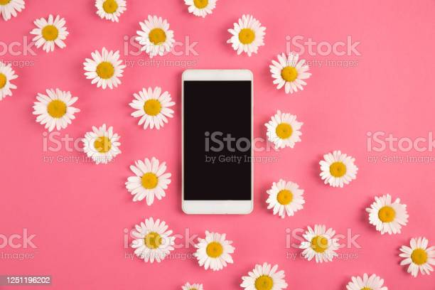 Photo of Smartphone surrounded by flowers on pastel pink background