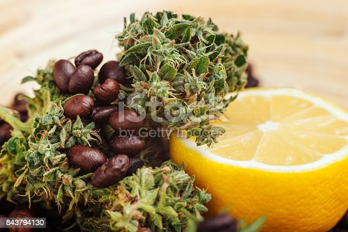 istock smell of cannabis can be fragrant, odorous, lemon, coffee, earthy, floral, cheesy or meadow grasses 843794130