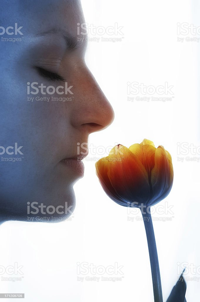 smell of spring royalty-free stock photo