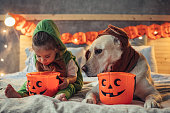 Little boy and his dog in costumes on bed celebrating Halloween