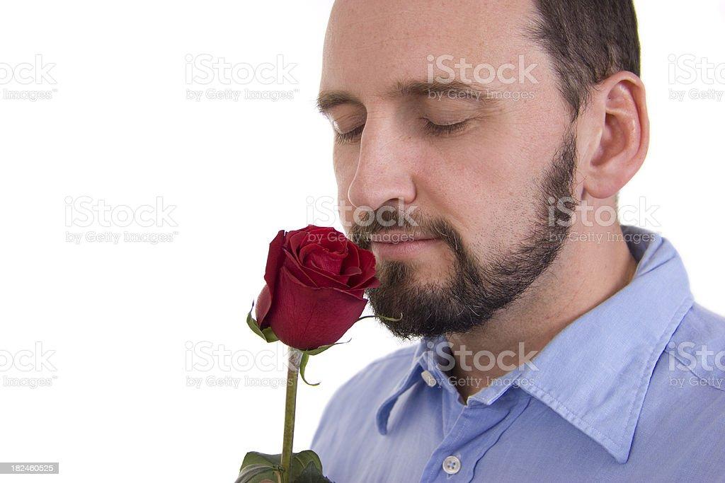 Oler una rose foto de stock libre de derechos