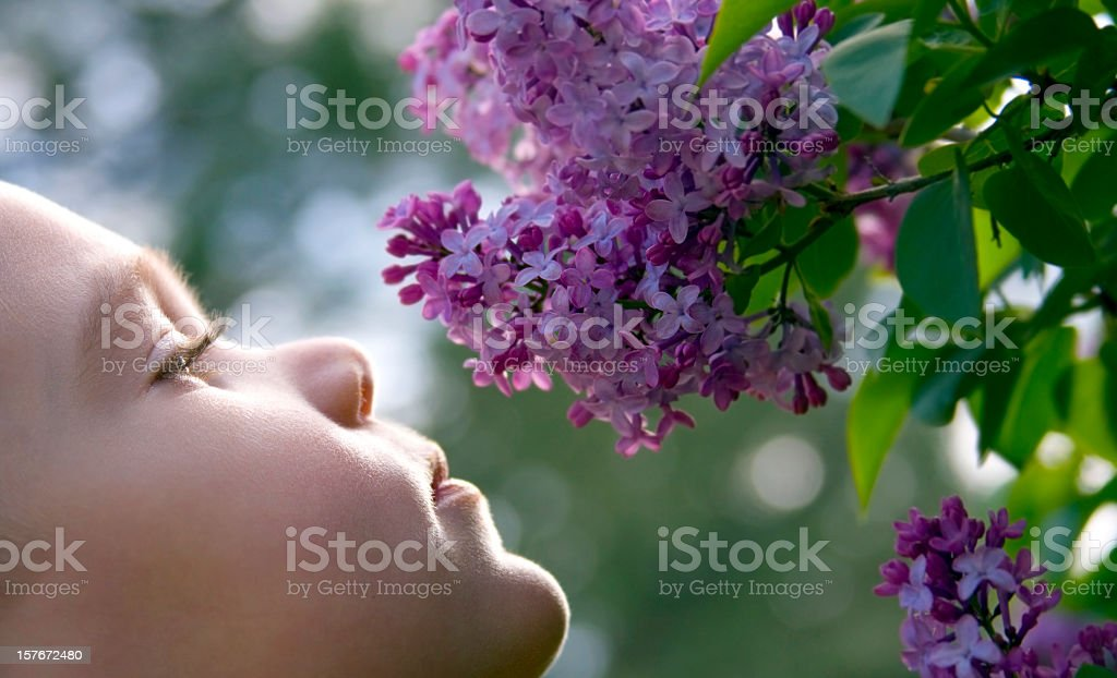 Smelling Flowers stock photo